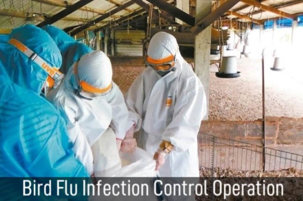 Bird Flu infection control operation by Ultitec Coveralls